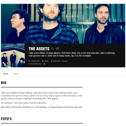 Bandpics of The Assets, e.g. on there website: http://vi.be/theassets