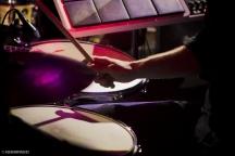 Roland Hybrid Tour 2014 (2)
